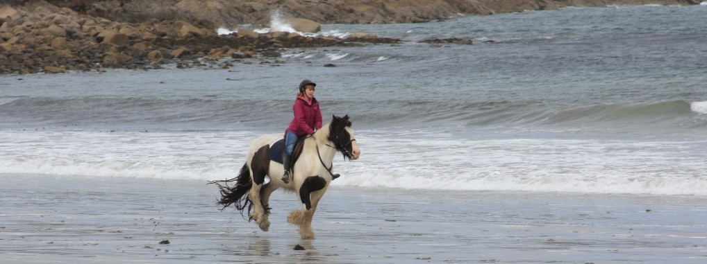 Ireland's premier horse riding holiday experience